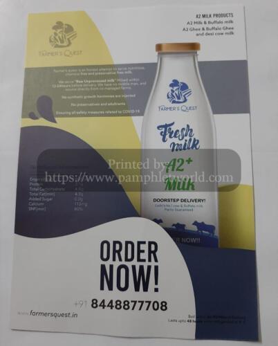 A2-fresh-milk-flyer-PamphletWorld