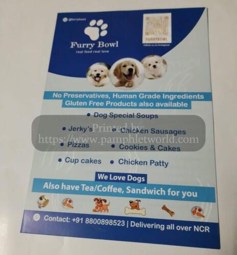 animal-treatment-flyer-PamphletWorld