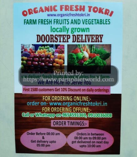 organic-vegetable-home-delivery-flyer-PamphletWorld